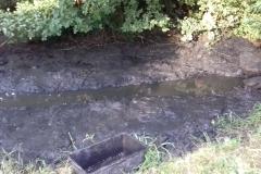 Odbahnění pod stavidlem - Továrenské rybníky