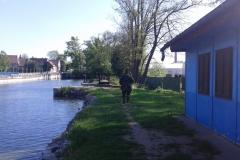 """Závody """"Dospělí"""" - Továrenské rybníky"""